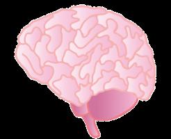 脳内のドパミン