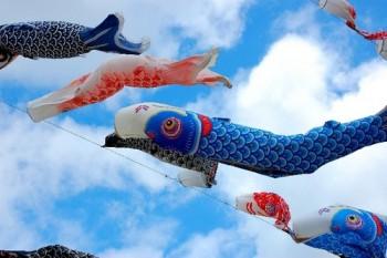 鯉のぼりのベランダ用を初節句の孫に贈る場合の選び方